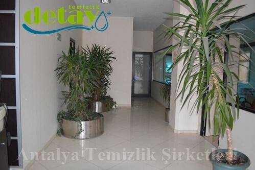 Antalya temizlik şirketleri